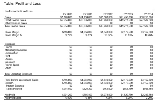 profit and losses example juve cenitdelacabrera co