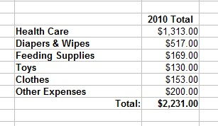 Baby Expense Report Month 12 Fiscal Fizzle